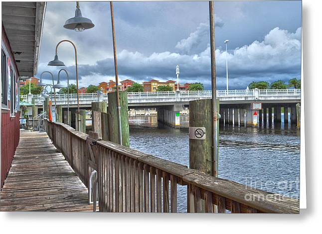 Naples Florida Waterfront Greeting Card by Timothy Lowry