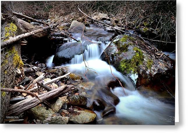 Naramata Creek Greeting Card by Guy Hoffman