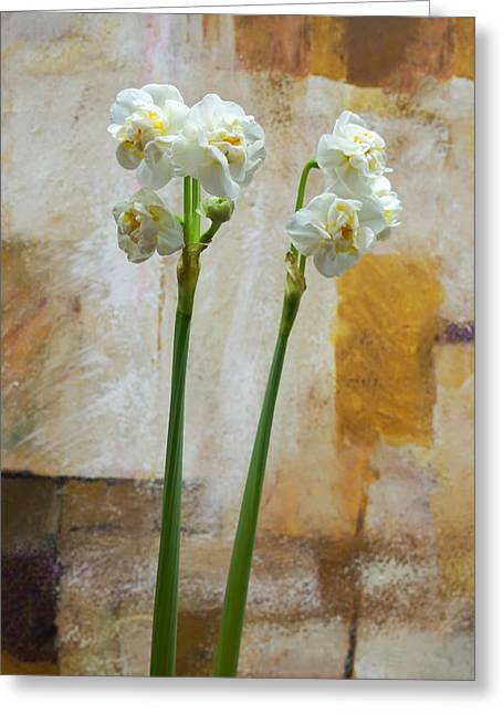 Narcissus And Artwork Greeting Card