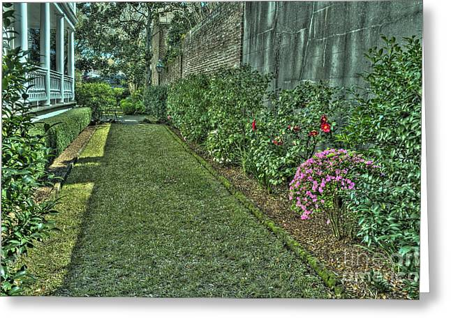 Narrow Urban Garden Greeting Card