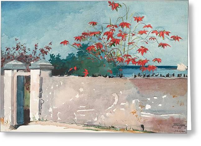 Nassau Bahamas Greeting Card by Winslow Homer