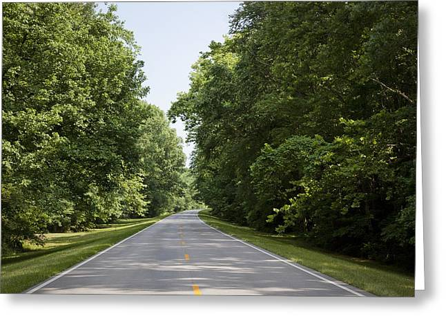 Natchez Trace Parkway In Cobert County Greeting Card by Carol M Highsmith