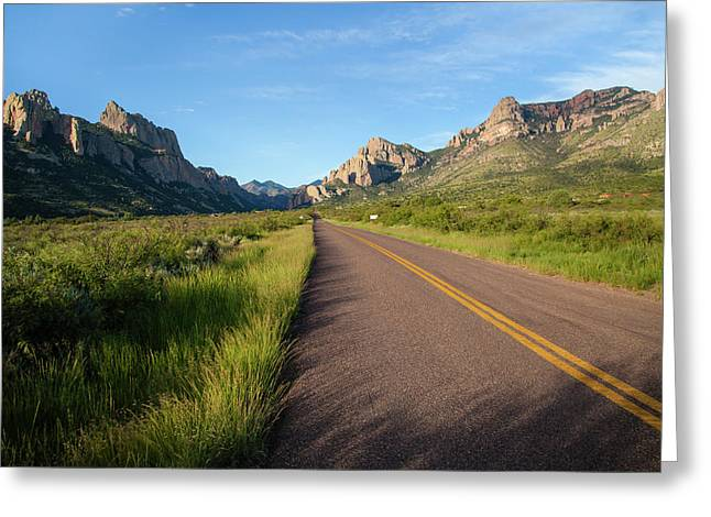 National Forest Road Greeting Card by Larry Ditto