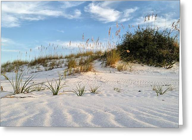 Natural Beauty Of Destin Greeting Card