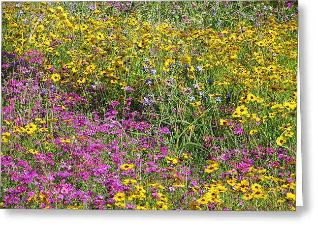 Natural Beauty Greeting Card by Tim Townsend