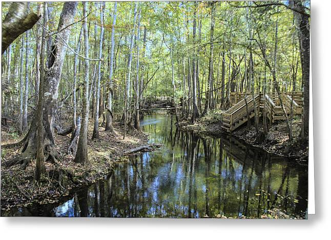 Natural Bridge Springs Greeting Card by Frank Feliciano