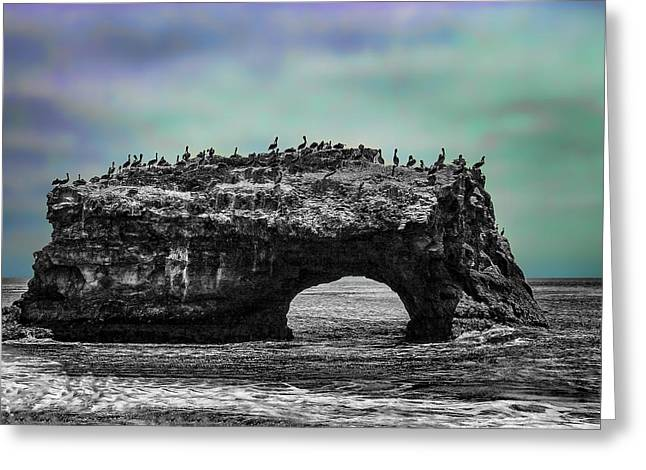 Natural Bridges State Beach Greeting Card
