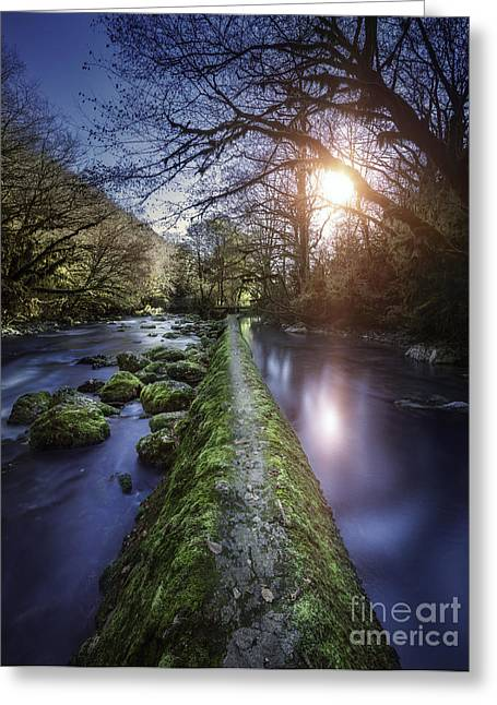Natural Path Between Two Streams Greeting Card by Evgeny Kuklev