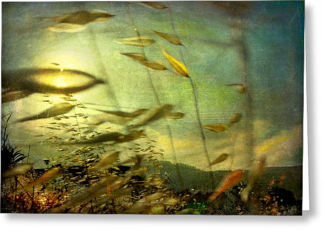 Greeting Card featuring the photograph Nature #12. Strong Wind by Alfredo Gonzalez