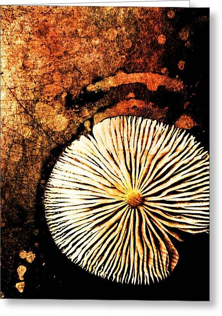 Greeting Card featuring the digital art Nature Abstract 14 by Maria Huntley