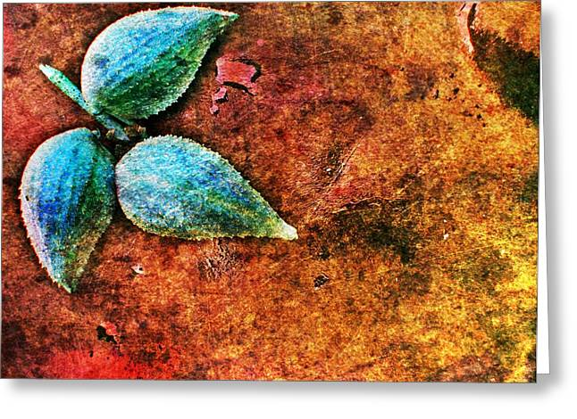 Greeting Card featuring the digital art Nature Abstract 17 by Maria Huntley
