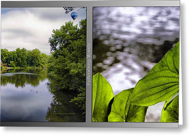 Nature Center 02 Water Leaf Fullersburg Woods 2 Panel Greeting Card