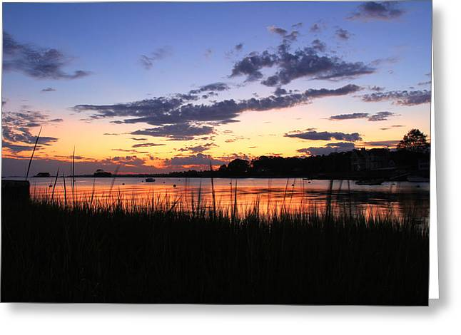 Nature In Connecticut Greeting Card by Mark Ashkenazi