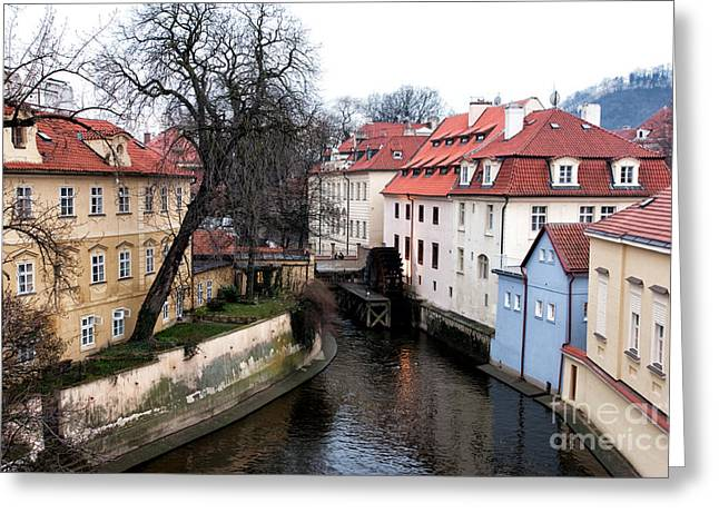 Nature In Prague Greeting Card