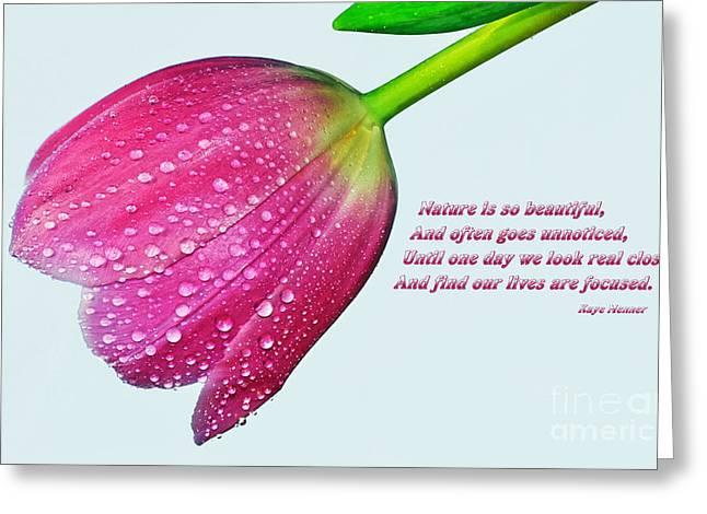 Nature Is So Beautiful... Greeting Card