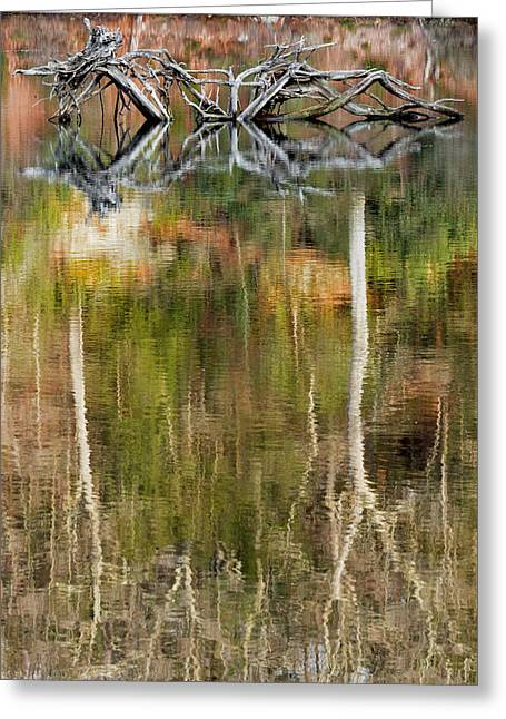 Nature Made Portrait Greeting Card by Bill Wakeley