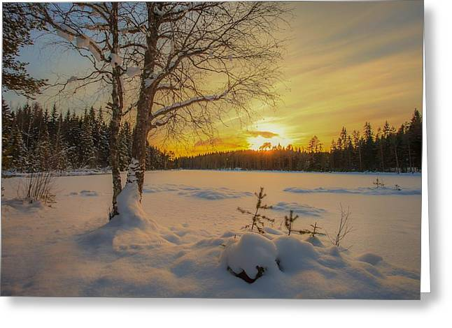 Nature Of Norway Greeting Card by Rose-Maries Pictures