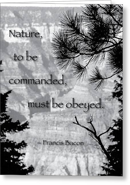 Nature To Be Commanded Greeting Card by Mike Flynn