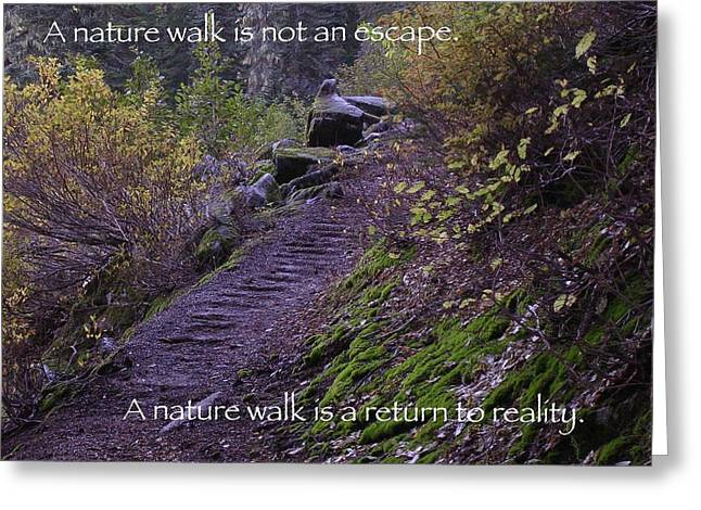 Nature Walk Greeting Card by Tom Trimbath