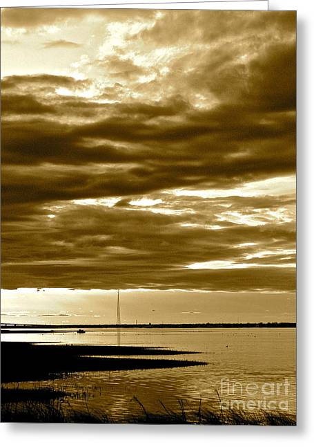 Nature Witnesses Greeting Card by Q's House of Art ArtandFinePhotography