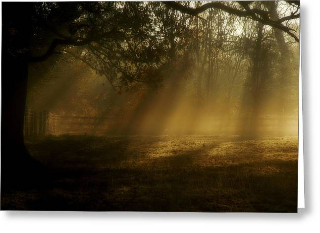 Natures Alarm Clock  Greeting Card by John Chivers
