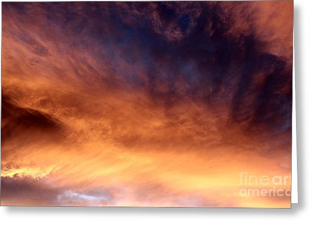 Nature's Canvas II Greeting Card by Krissy Katsimbras