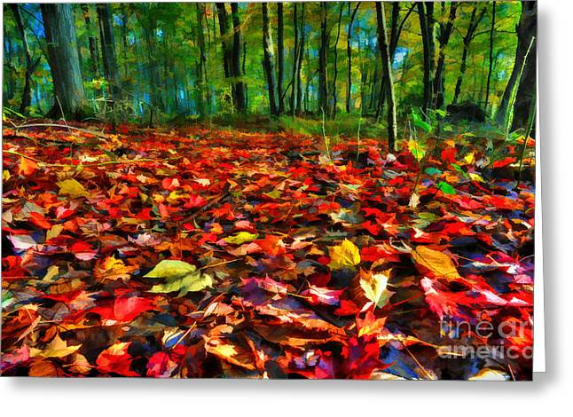 Natures Carpet In The Fall Greeting Card by Dan Friend