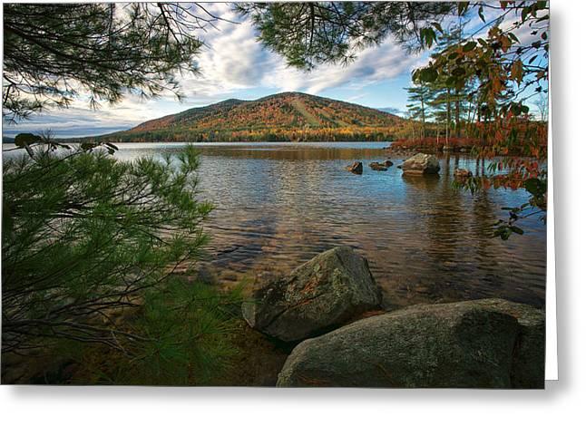 Nature's Fall Window Greeting Card by Darylann Leonard Photography