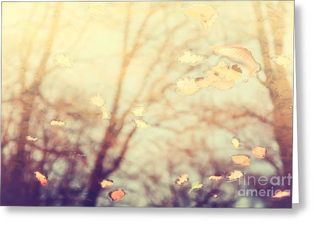 Nature's Golden Reflections Greeting Card by Natalie Kinnear