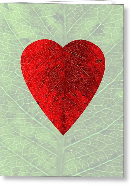 Nature's Heart Greeting Card by Deborah Smith