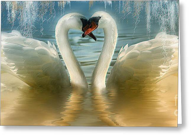 Natures Love Greeting Card