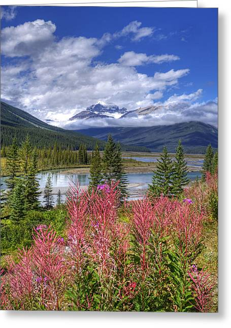 Natures Majesty Greeting Card