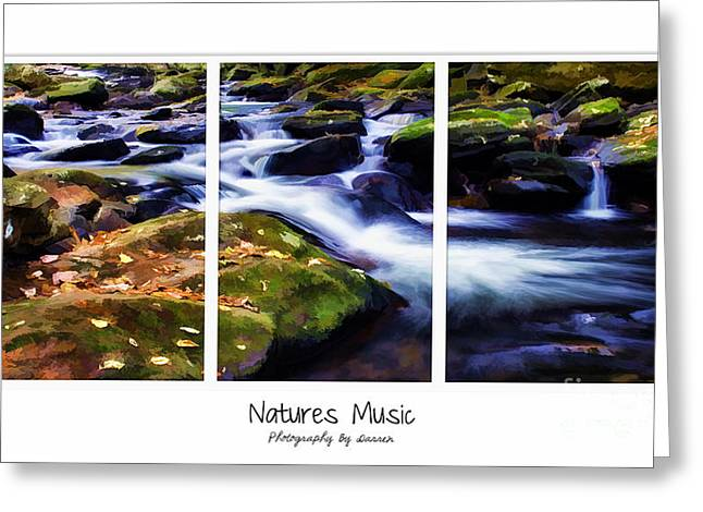 Natures Music Greeting Card by Darren Fisher