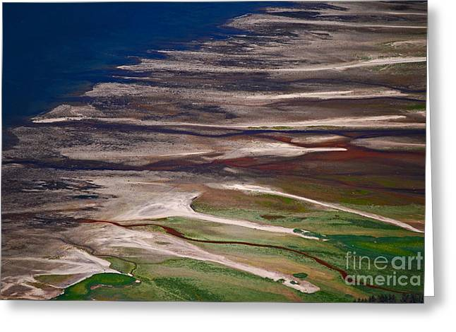 Greeting Card featuring the photograph Nature's Palette by Cynthia Lagoudakis
