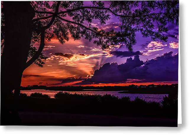 Nature's Perfection Greeting Card by Linda Karlin