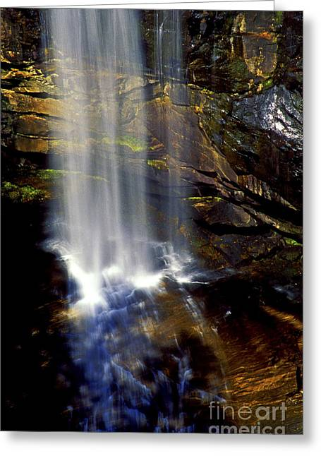 Natures Shower Stall Greeting Card by Paul W Faust -  Impressions of Light