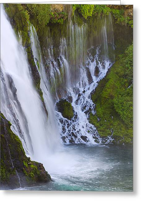 Natures Water Fountain Greeting Card by Loree Johnson