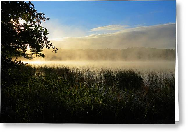 Greeting Card featuring the photograph Nature's Way by Dianne Cowen