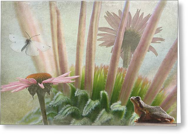 Natures Whimsy Greeting Card by Angie Vogel