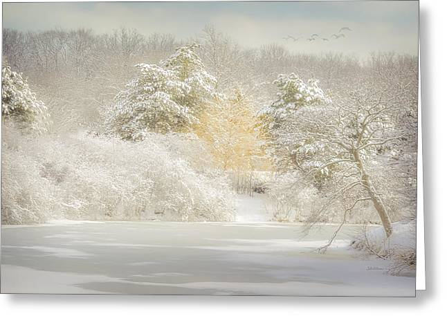 Natures Winter Landscape Greeting Card by Julie Palencia