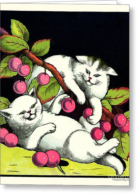 Naughty Cats Play With Cherries  Greeting Card by Pierpont Bay Archives