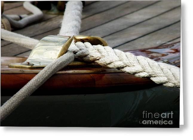 Nautical Textures Greeting Card by Lainie Wrightson