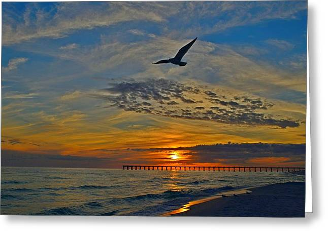 Greeting Card featuring the photograph Navarre Beach And Pier Sunset Colors With Gulls And Waves by Jeff at JSJ Photography