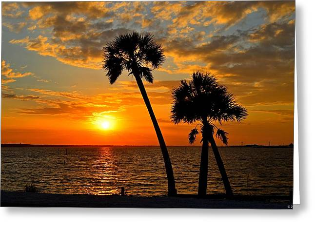 Navarre Beach Bridge Sunrise Palms Greeting Card