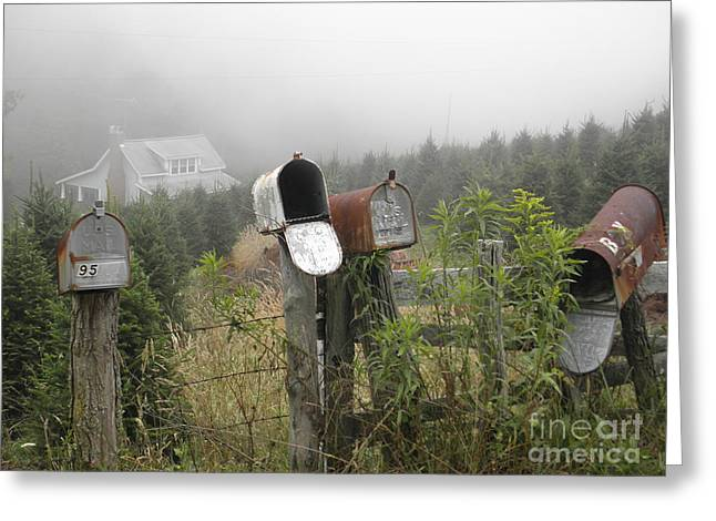 Nc Mailboxes Greeting Card