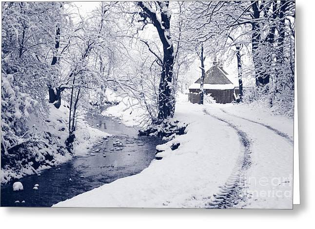 Greeting Card featuring the photograph Nearly Home by Liz Leyden
