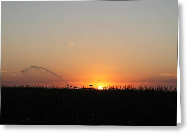 Greeting Card featuring the photograph Nebraska Sunset by Alicia Knust