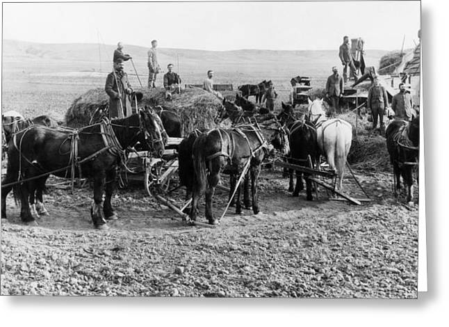 Greeting Card featuring the photograph Nebraska Threshing, 1886 by Granger