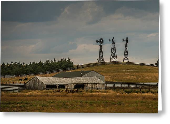 Nebraska Windmills Greeting Card by Paul Freidlund