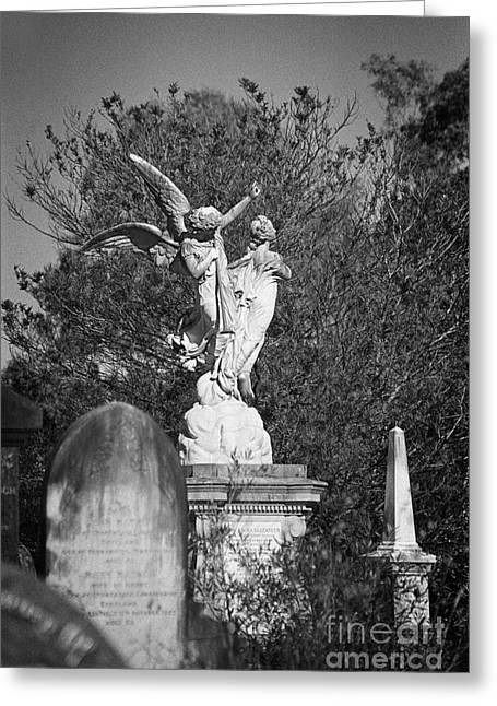 Necropolis 01 Greeting Card by Colin and Linda McKie